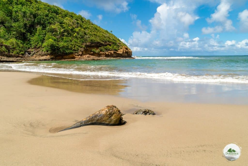 Batibou Beach, 多米尼克介绍 自然景观 Dominica, the Nature Island in Caribbean 加勒比的天然之岛